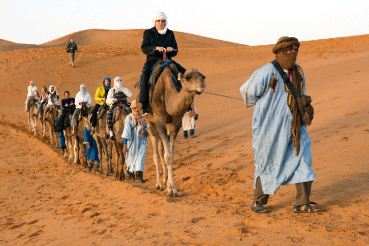 Sacharos dykuma. Kelionė kupranugariais