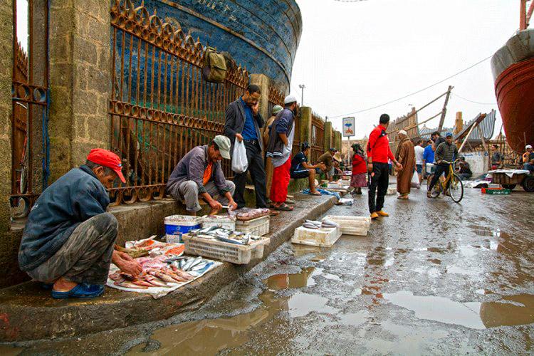 Essaouiro žuvų turgus. Žuvų turgus Maroke