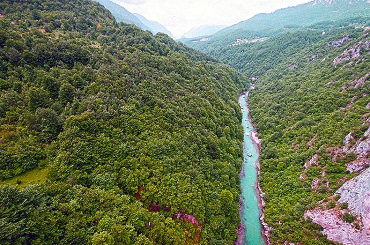 Taros upės kanjonas