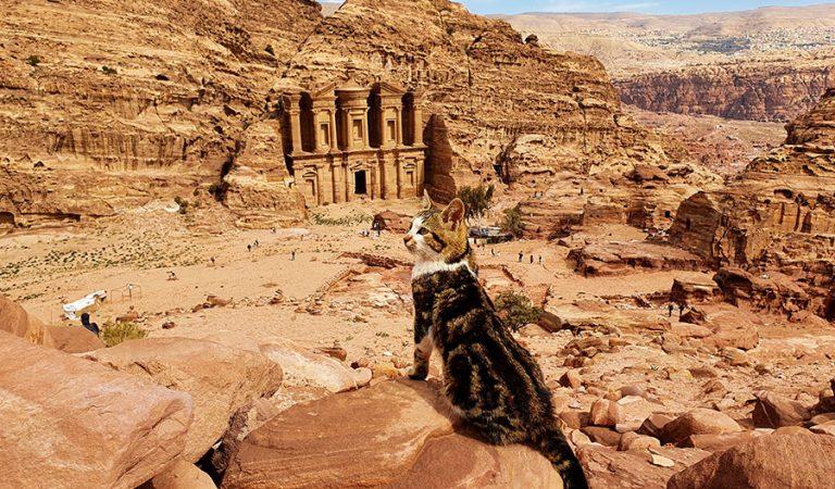 Kelionė į Jordaniją. Petra, Wadi Rum ir Negyvoji jūra