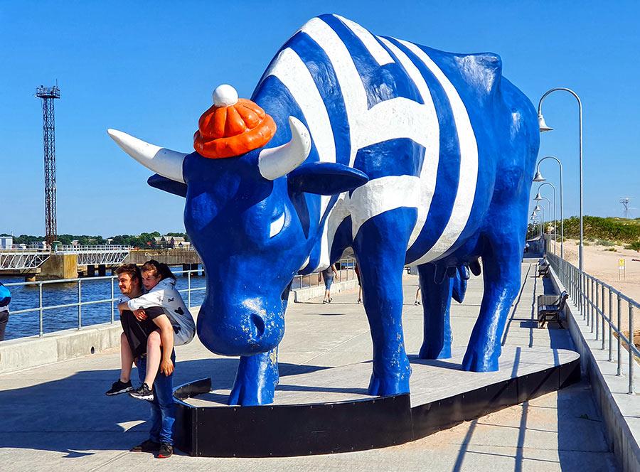Didžiausia karvė Ventpilyje