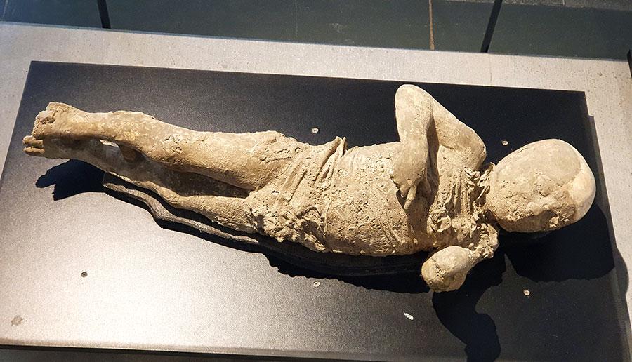 The Antiquarium of Pompeii